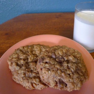 lactation cookies milk
