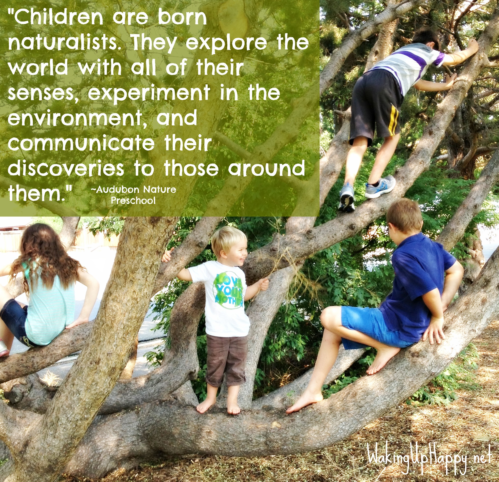 child naturalist quote